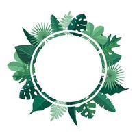 modello di sfondo circolare con cornice di bordo di foglie tropicali verdi vettore