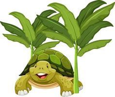personaggio dei cartoni animati di tartaruga con albero di banana isolato vettore