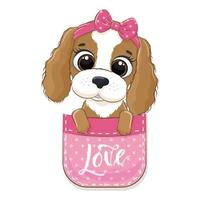 simpatico cagnolino in tasca. illustrazione vettoriale