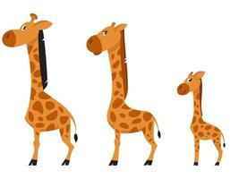 vista laterale della famiglia della giraffa. vettore