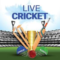 sfondo del torneo di cricket dal vivo vettore