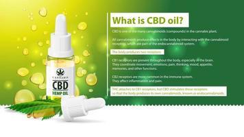 che cos'è l'olio di CBD, usi medici per l'olio di CBD della pianta di cannabis, poster verde con bottiglia di vetro trasparente di olio di CBD medico e foglia di canapa vettore