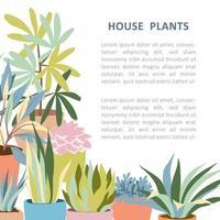 banner con piante domestiche vettore