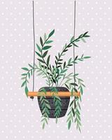 pianta d'appartamento in un gancio macramè vettore