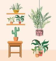 pianta d'appartamento con appendiabiti in macramè e piante in vaso vettore
