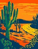 cactus saguaro al tramonto nel parco nazionale del saguaro a tucson in arizona, parco nazionale della california, poster art wpa vettore