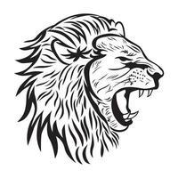 schizzo e disegno della testa del leone maschio vettore