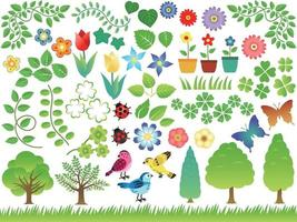 set di elementi botanici primaverili ed estivi isolato su uno sfondo bianco. vettore