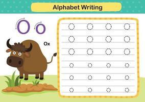 alfabeto lettera o-bue esercizio con illustrazione di vocabolario dei cartoni animati, vettore