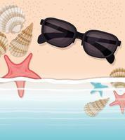 conchiglia di mare e stella nel design della sabbia vettore