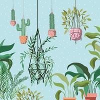 piante d'appartamento nella scena del giardino di grucce macramè vettore
