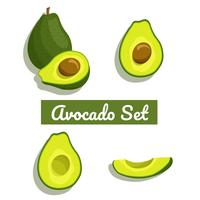 set vettoriale avocado