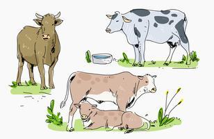Bestiame nell'illustrazione disegnata a mano di vettore dell'azienda agricola