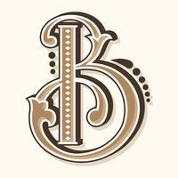 Tipografia della lettera B. vettore