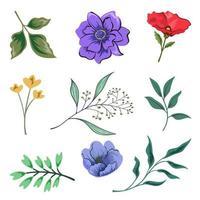 raccolta di belle erbe e fiori selvatici e foglie isolati su sfondo bianco. vettore