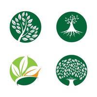 albero logo immagini design set vettore