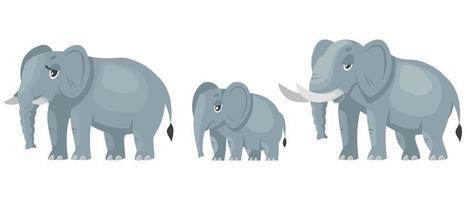 vista di tre quarti della famiglia dell'elefante. vettore