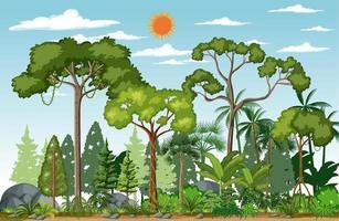 scena della foresta con molti alberi durante il giorno vettore