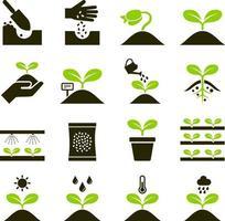 icone di piante. illustrazioni vettoriali. vettore