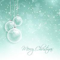 Decorazioni natalizie innevate vettore