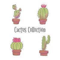 Collezione Cute Cactus vettore
