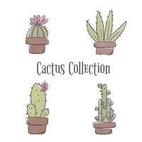 Collezione di cactus vettore
