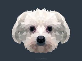 Ritratto astratto del cane maltese nella progettazione bassa di vettore di poli