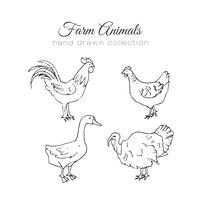 Illustrazione di allevamento. Vector elementi di fattoria. Animali da fattoria disegnati a mano.