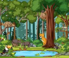 scena della foresta pluviale con animali selvatici vettore