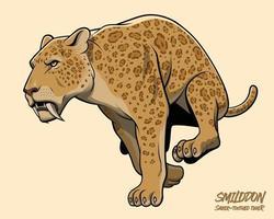 tigre dai denti a sciabola in esecuzione vettore