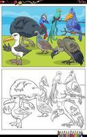 cartone animato uccelli personaggi animali pagina del libro da colorare vettore