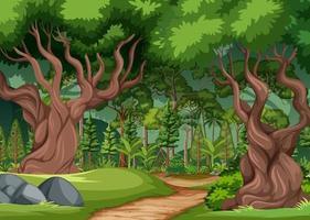 scena della foresta con sentiero escursionistico e molti alberi vettore