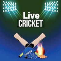sfondo del torneo di cricket con attrezzatura da cricket vettore