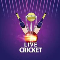 partita di torneo dal vivo di cricket e sfondo dello stadio vettore