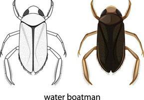 barcaiolo di acqua a colori e scarabocchio isolato vettore