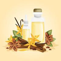 Illustrazione di vettore di oli essenziali di vaniglia