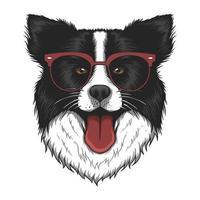 cane border collie con illustrazione vettoriale occhiali