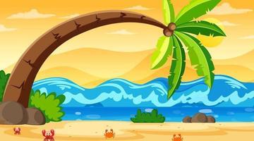 scena di paesaggio spiaggia tropicale con un grande albero di cocco vettore