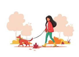 donna che cammina con il cane in autunno. concetto di attività all'aperto. illustrazione vettoriale. vettore
