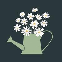 illustrazione vettoriale di mazzo di fiori di camomilla freschi in annaffiatoio su sfondo scuro