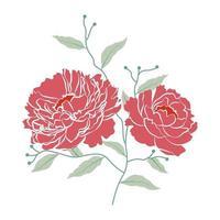 illustrazione vettoriale di fiori di peonia con ramo e foglia