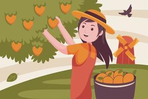 donna contadina raccoglie frutta dall'albero di mango. vettore