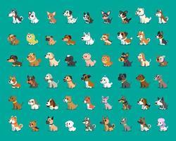 diverse razze di cani dei cartoni animati vettore