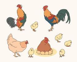 illustrazione di galline e pulcini gallo vettore