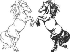 schizzo di allevamento di cavalli stallone rampante doodle disegno vettoriale di assieme