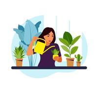 donna che innaffia le piante d'appartamento a casa. stile di vita, giardino di casa e concetto di piante d'appartamento. illustrazione vettoriale piatta.