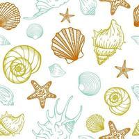 seamless con conchiglie, stelle marine. sfondo marino. illustrazione vettoriale disegnato a mano nello stile di abbozzo. perfetto per saluti, inviti, libri da colorare, tessuti, matrimoni e web design.