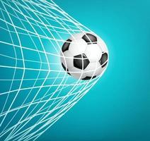 pallone da calcio in rete. obbiettivo. vettore