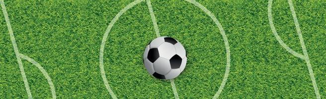 campo da calcio classico realistico con rivestimento verde bicolore vettore