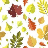 modello senza saldatura con foglie d'autunno vettore
